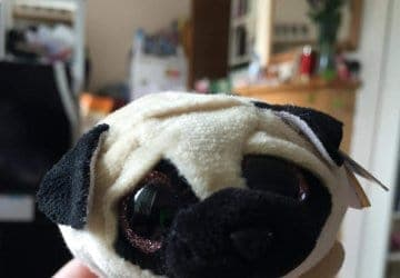 pug dog soft toy