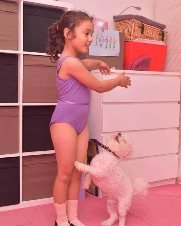 dog ballet