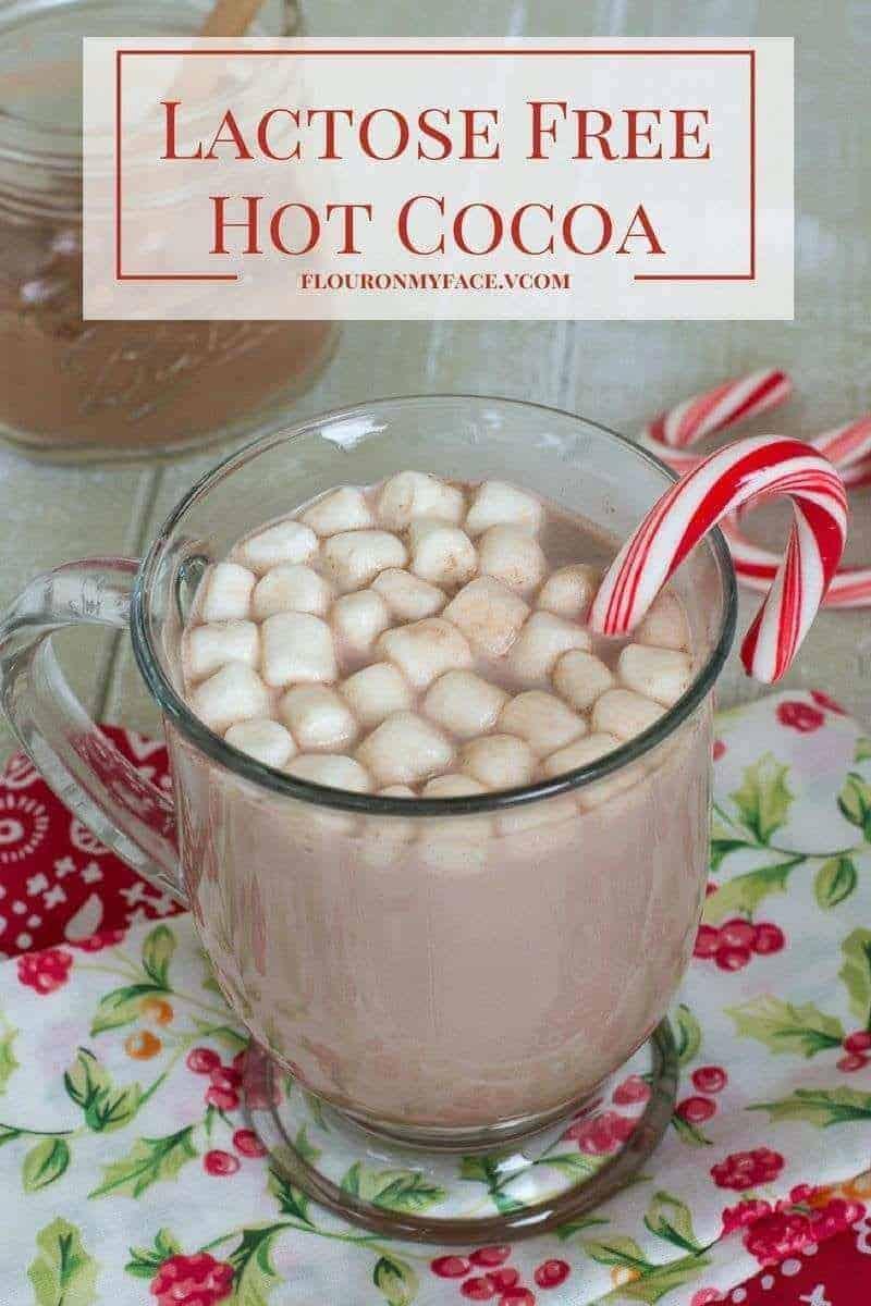 Lactose-Free-Hot-Cocoa-flouronmyface