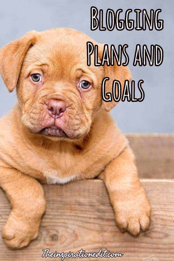 blogging plans