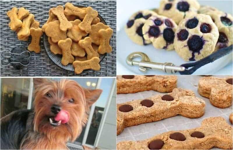 20 HOMEMADE DOG TREATS