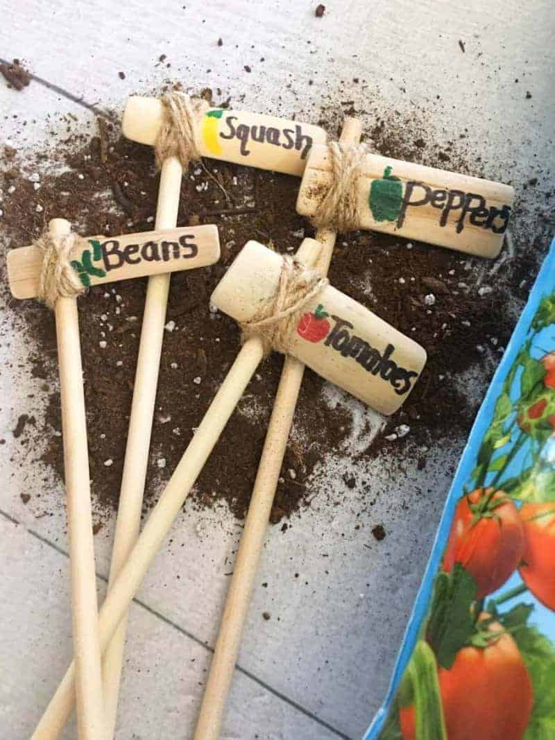 vegetable Garden Posts