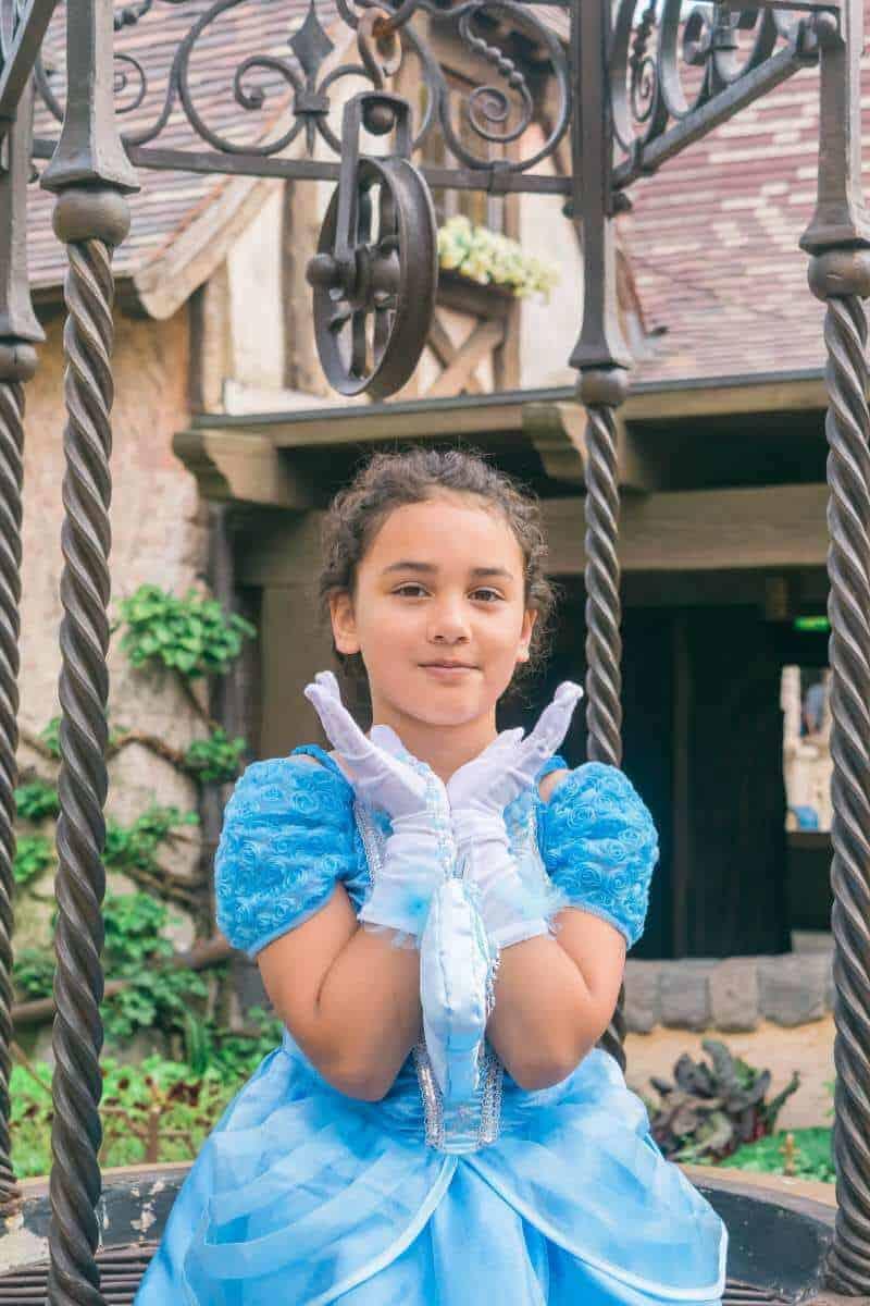 Disneyland Pairs Cinderella costume