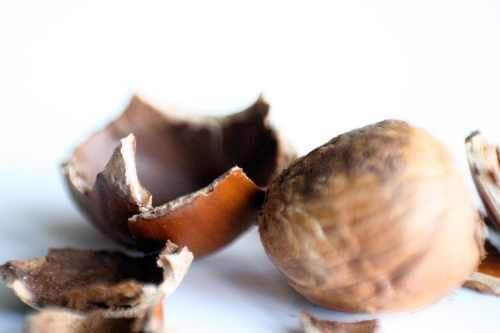 Hazelnut-espresso lip balm