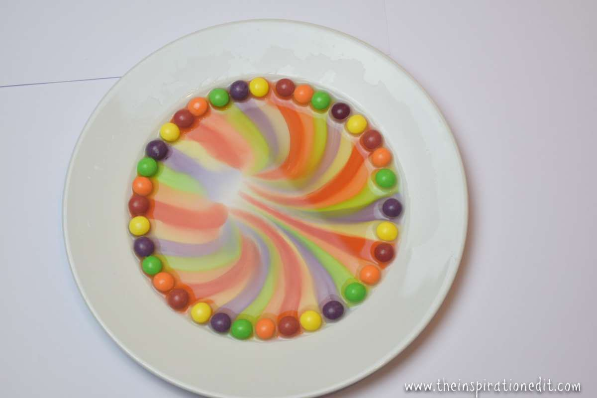 stem activity using skittles