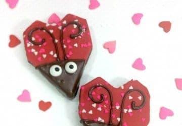 VALENITNES LOVE BUGS