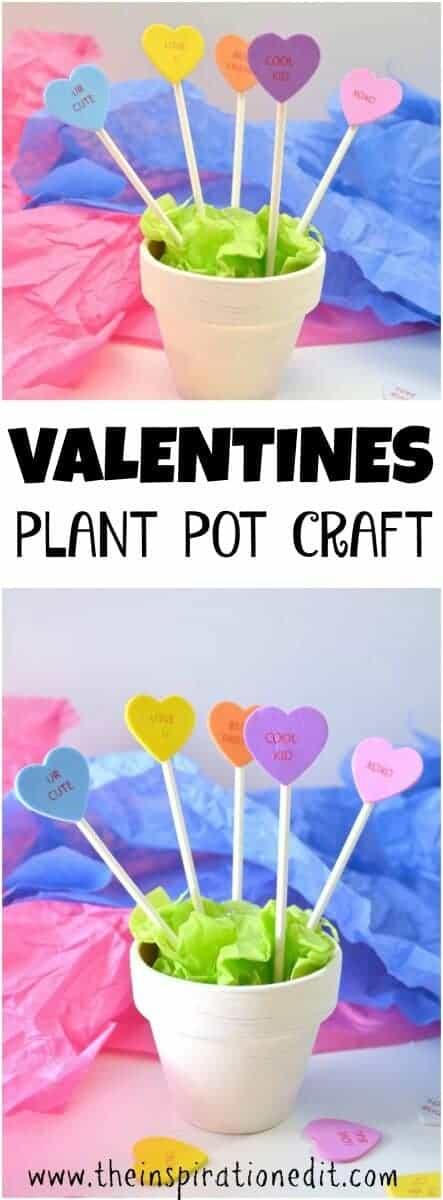 valentines plant pot