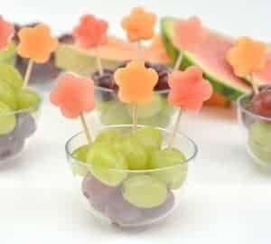 kids fruit snacks