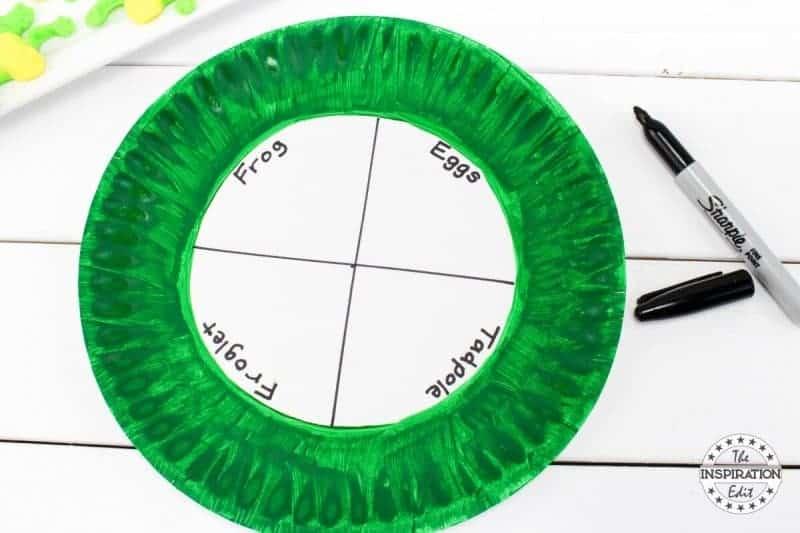 Frog Craft Activity