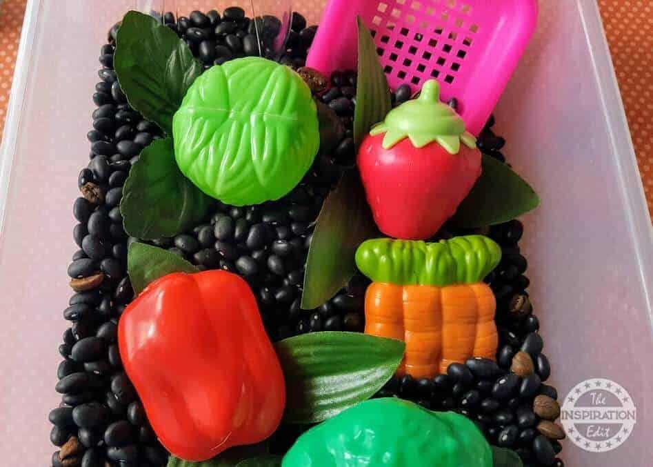 vegetable Sensory Bin