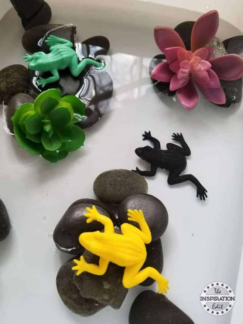 frog sensory bin`