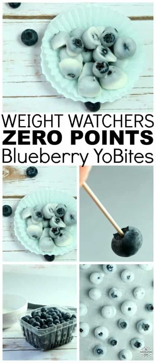 Weight Watchers Blueberry