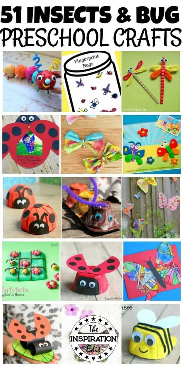 insects and bugs crafts