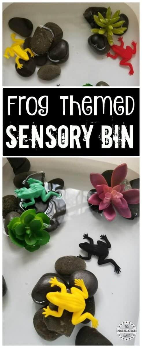 frog themed sensory bin