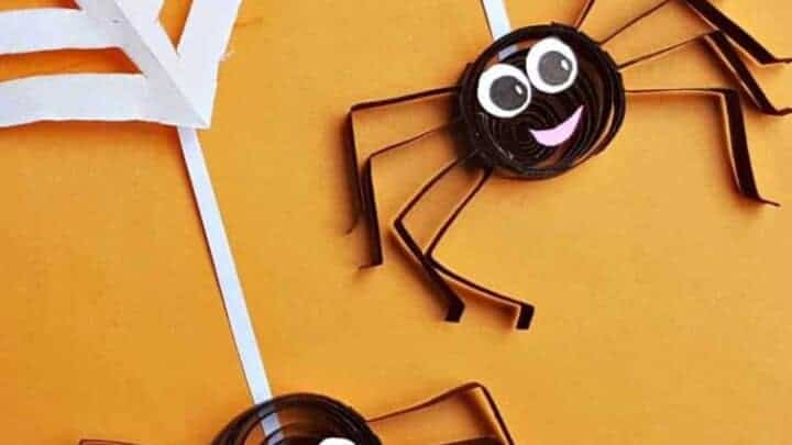 QUILLED SPIDERS