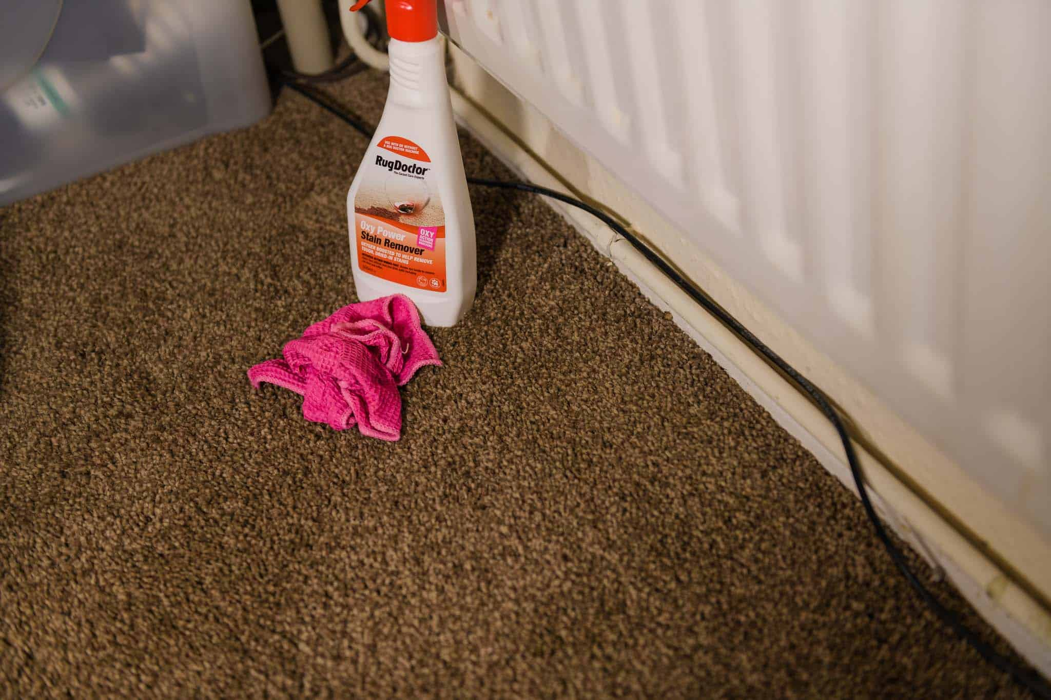 removing carpet stains with rug doctor stain remover