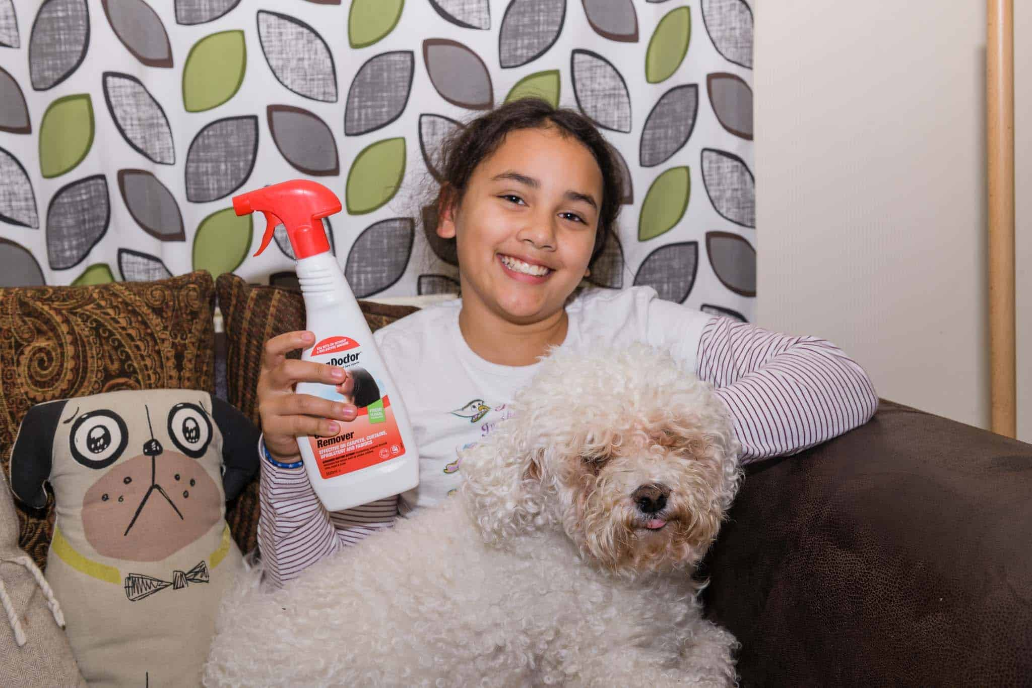 removing pet urine with rug doctor urine eliminator