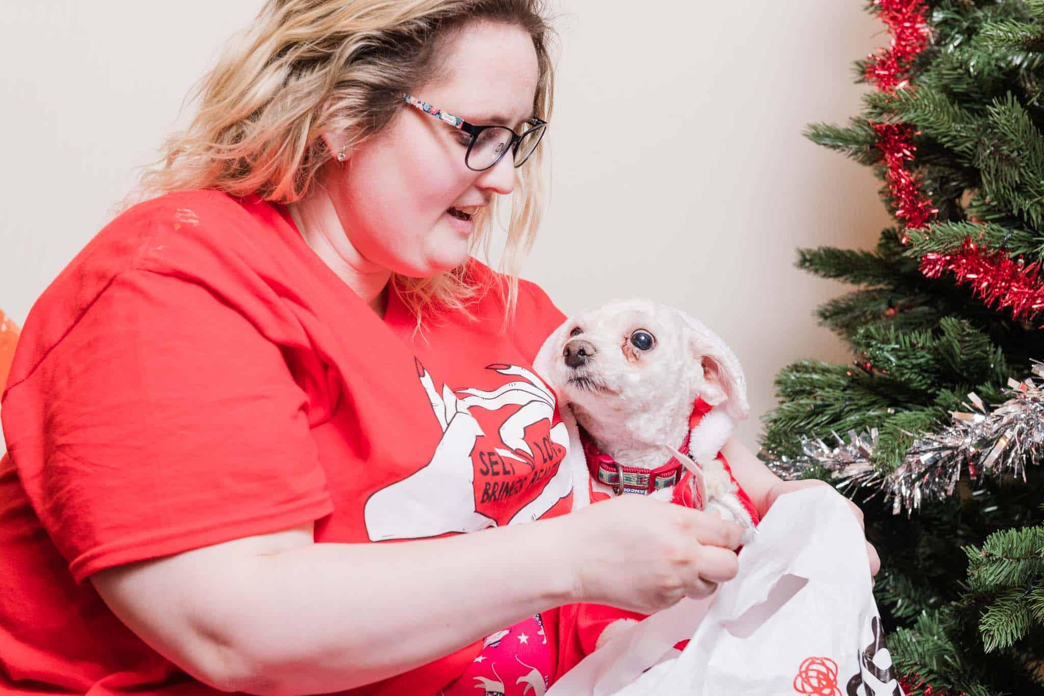 christmas presents at the festive season