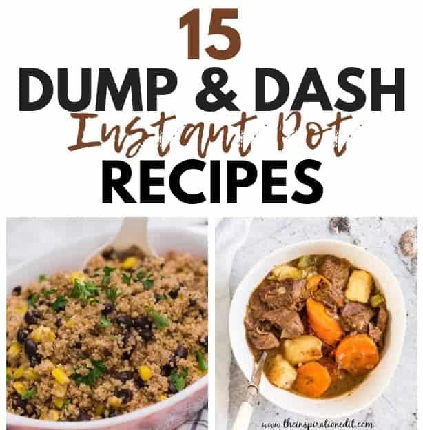 instant pot dash recipes