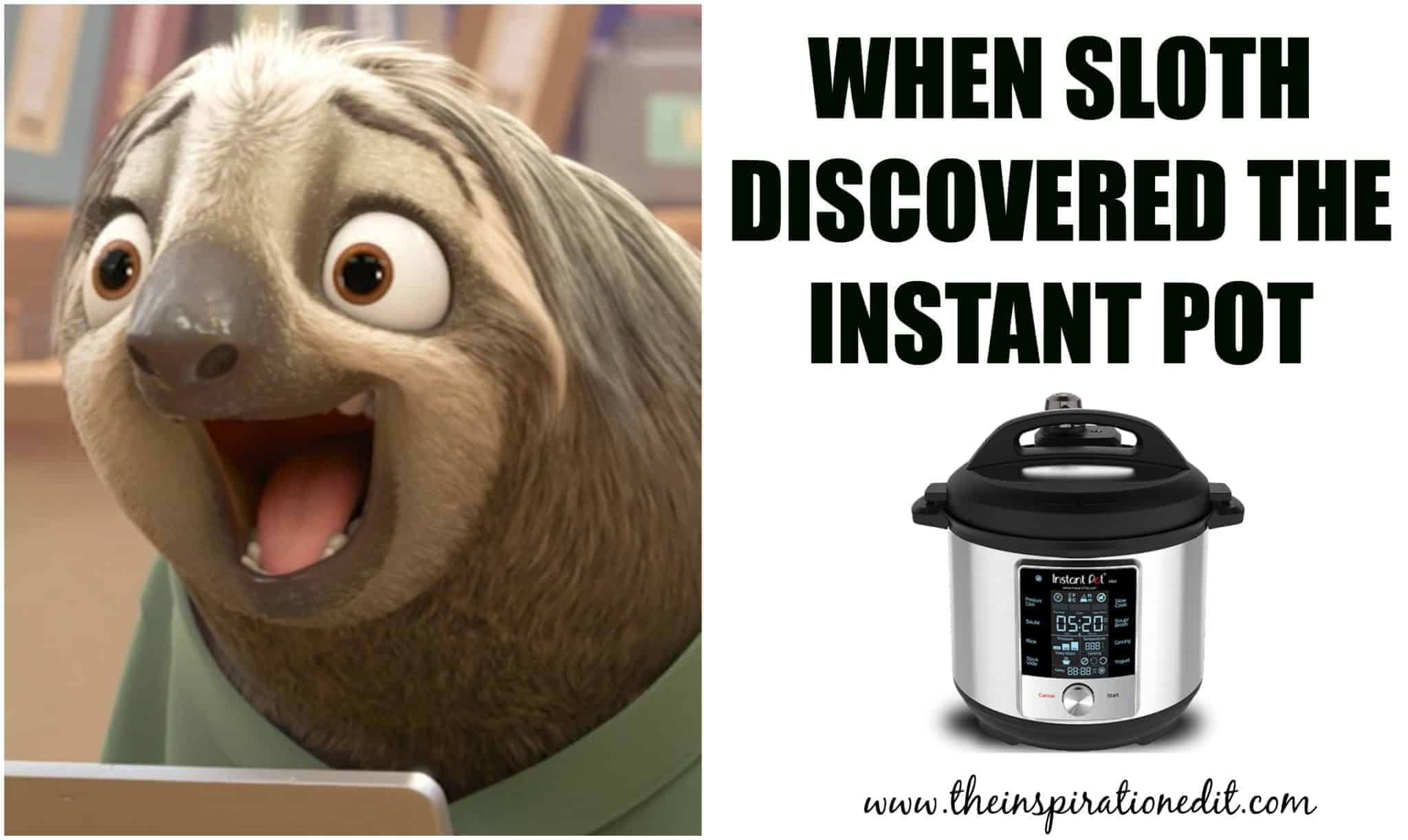 when sloth discovered the instant pot