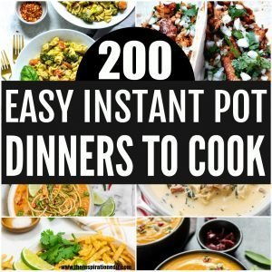 easy instant pot recipes for dinner