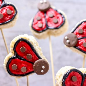 ladbug party food idea