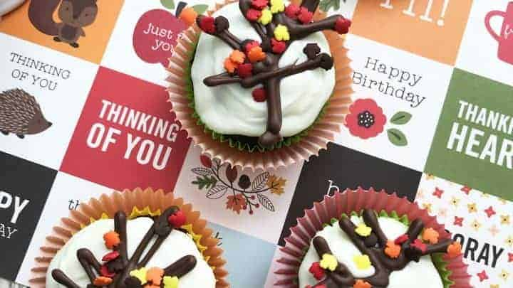 autumn fall cupcakes