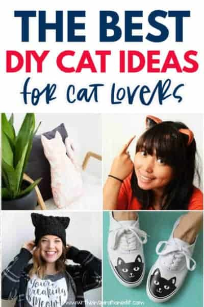 DIY CAT CRAFT