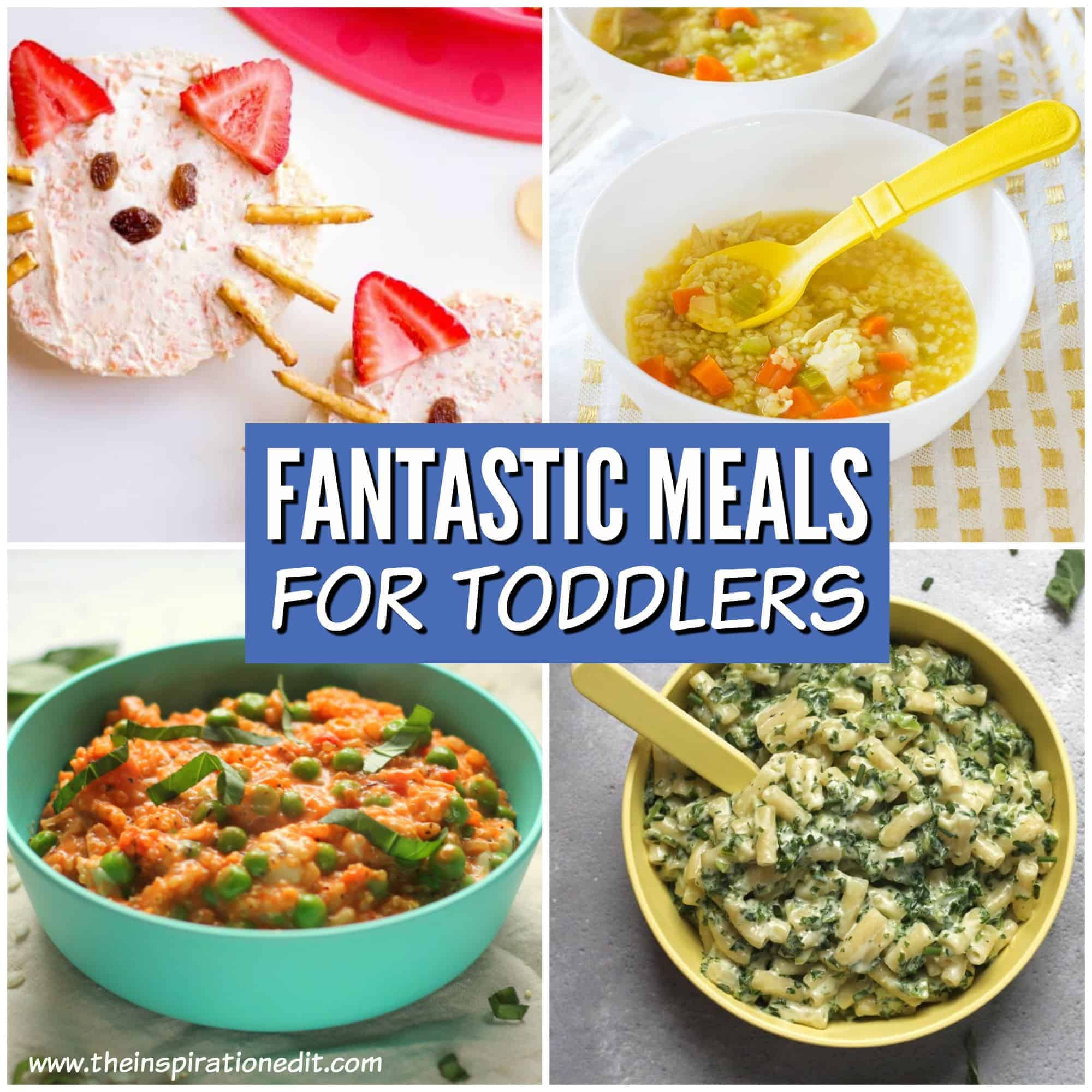 meals for toddlers