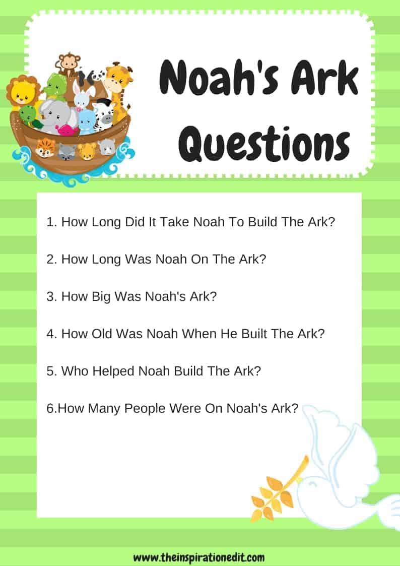 noah's ark questions