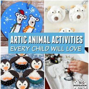 Artic Animal Activities for kids to enjoy