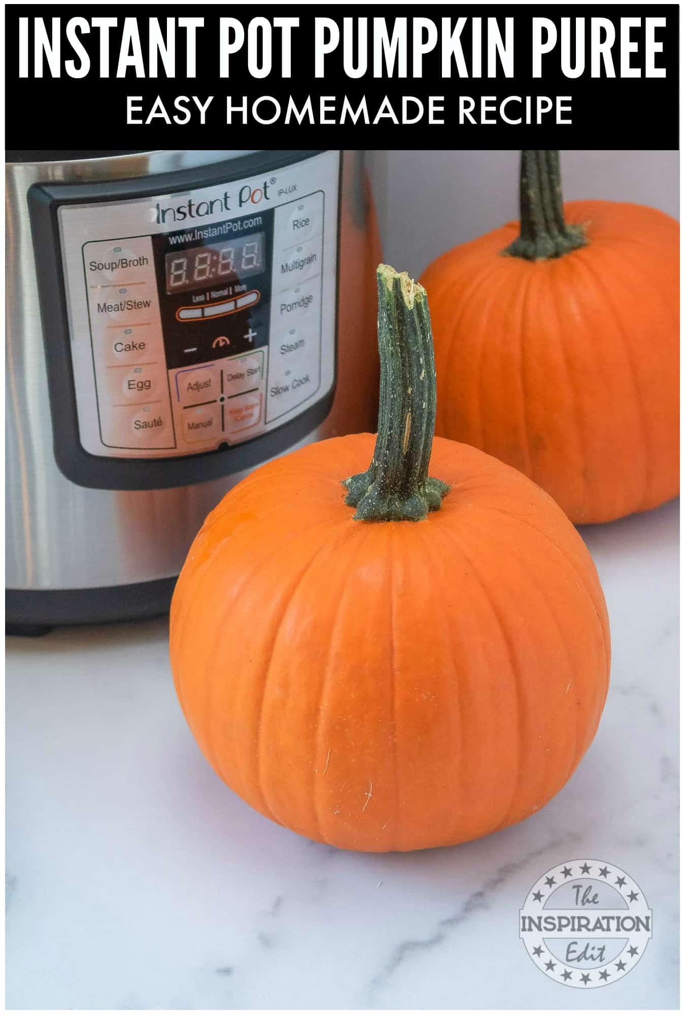 Homemade pureed pumpkin recipe