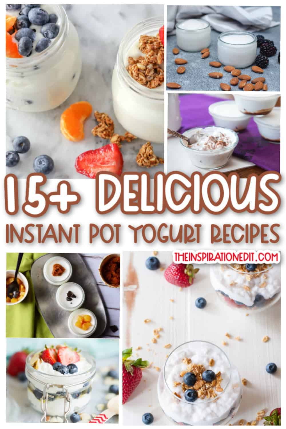 instant pot yogurt recipes