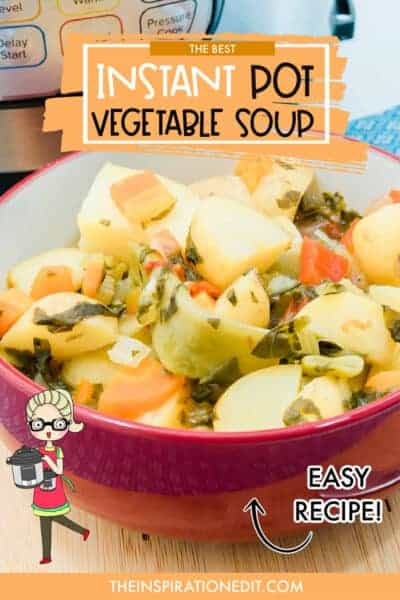 Best Instant Pot Vegetable Soup