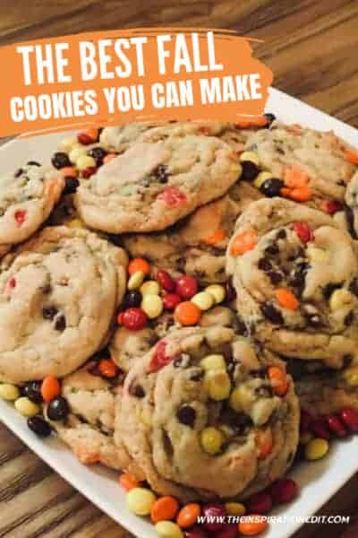 The best fall cookies recipe