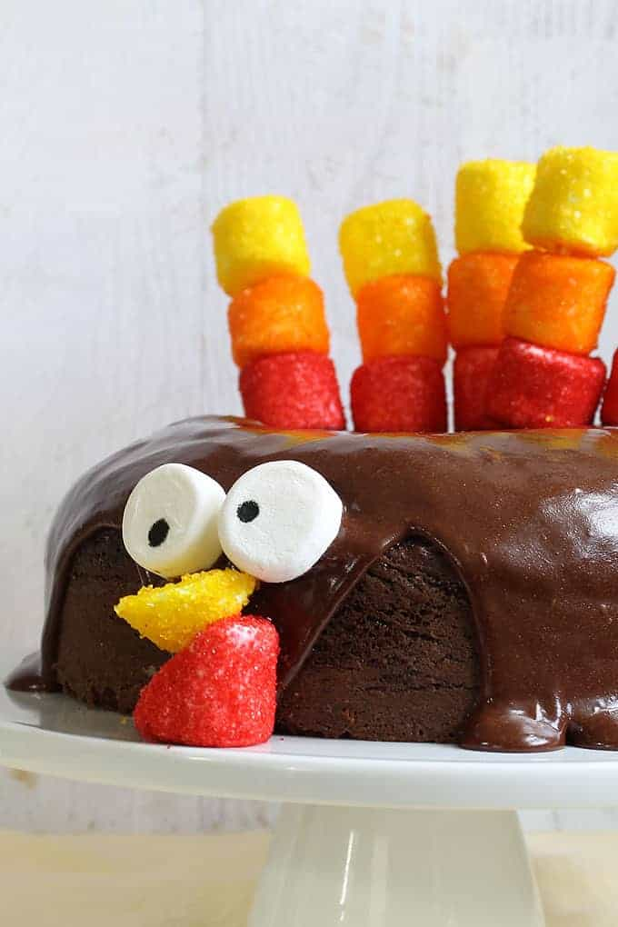 turkey-chocolate-cake-image
