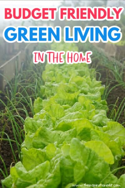 Budget friendly green living