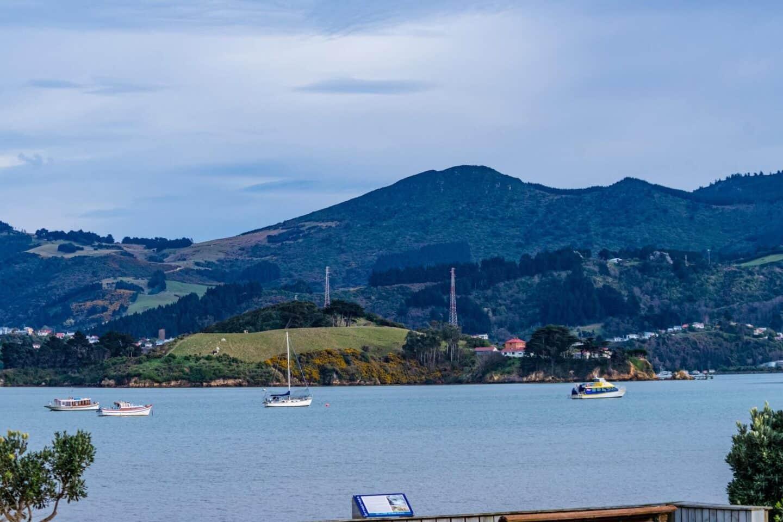 Dunedin-New-zealand
