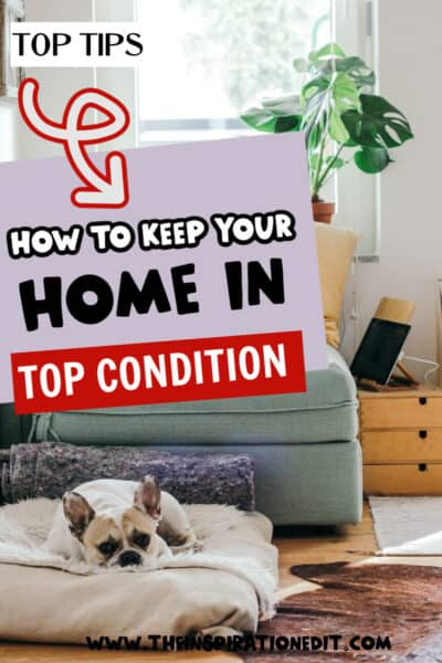 keep-your-house-in-top-condition