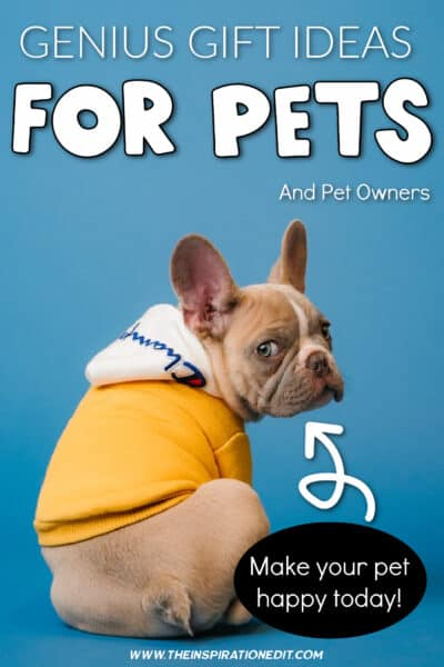 gifts-for-pets-
